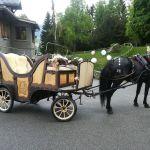 Mariage - Manoir Des Brons - Calèche